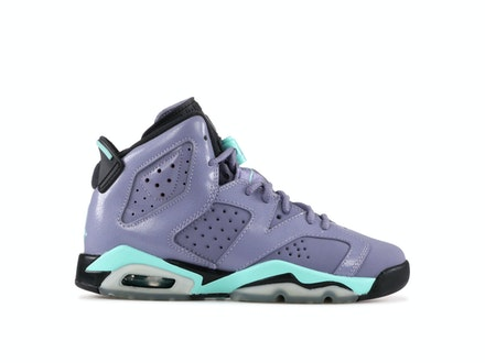 Air Jordan 6 Retro GG Iron Purple